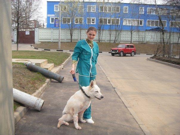 Первая настоящая работа (всмысле, не ассистент, а целый ветеринарный врач, дипломированный!), 2010 год.